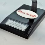 Your Custom Painted Beechcraft G36 Bonanza Scale Model